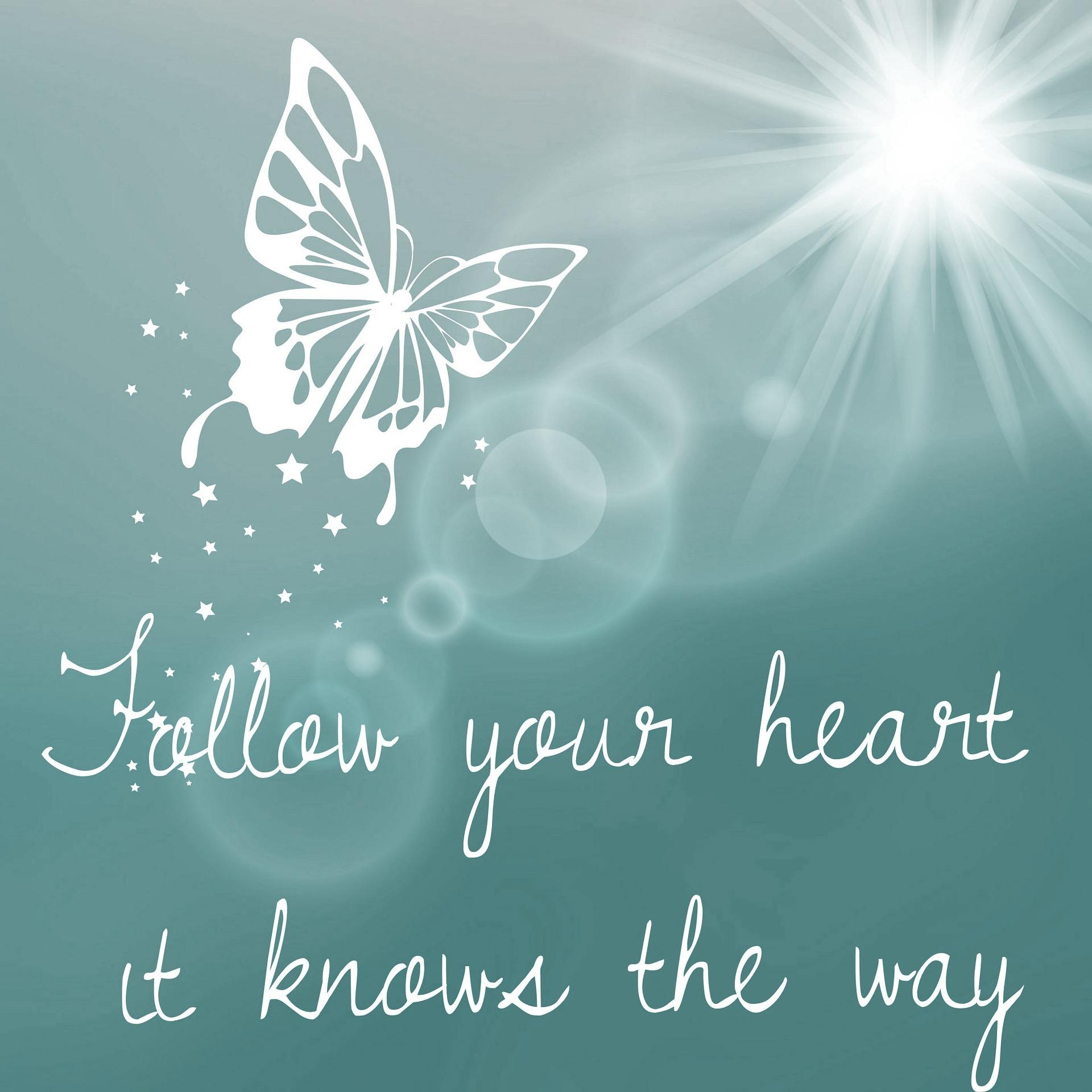 Volg-je-hart-oprah