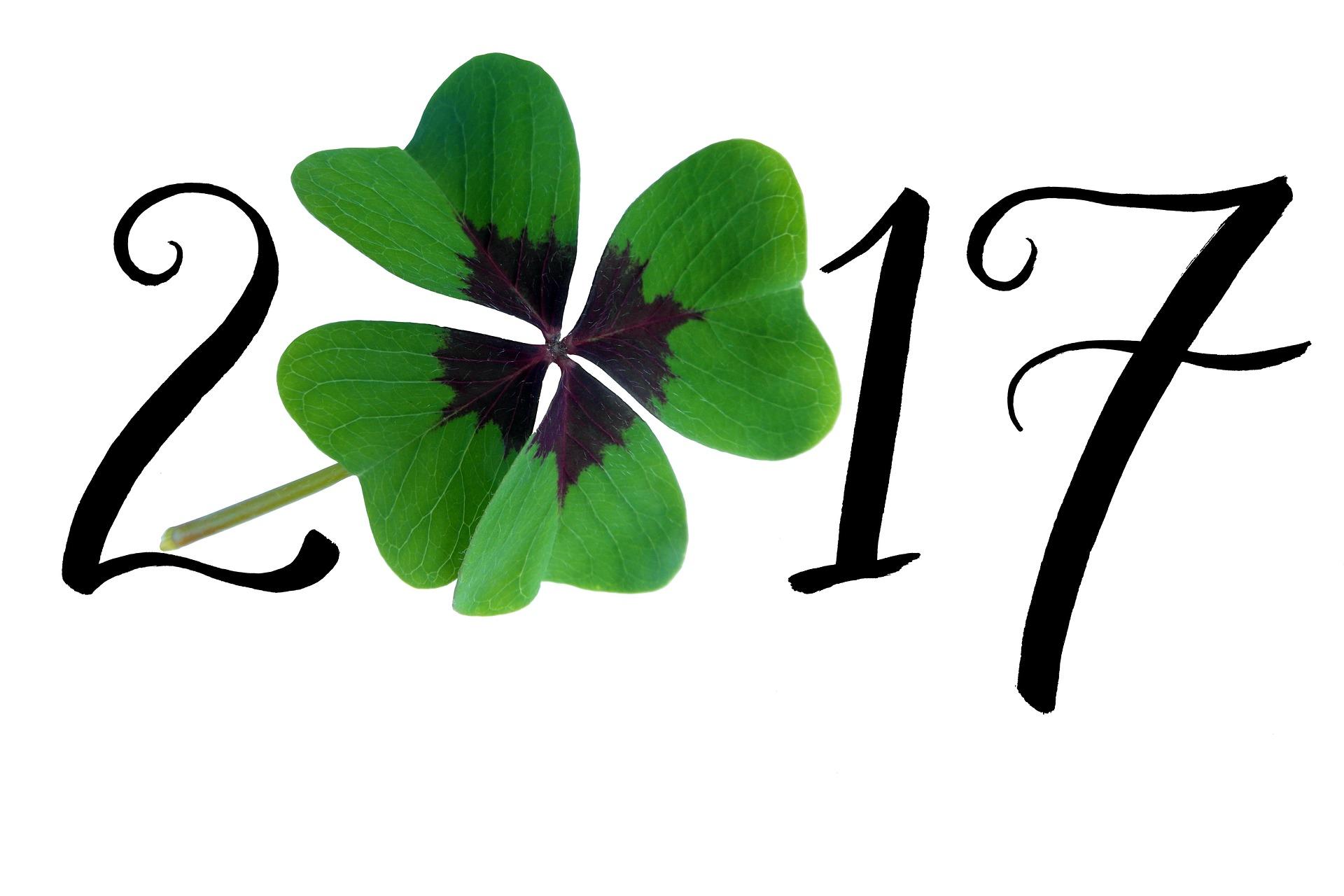 2017-een-nieuw-jaar